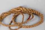 【软兵器来啦】皮鞭?七节鞭?是啥鞭?